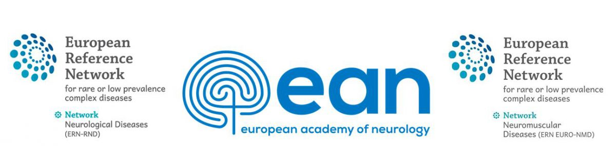 "24 November 2020 | ERN-RND webinar ""Development of Sara-home: a novel assessment tool for patients with ataxia"""